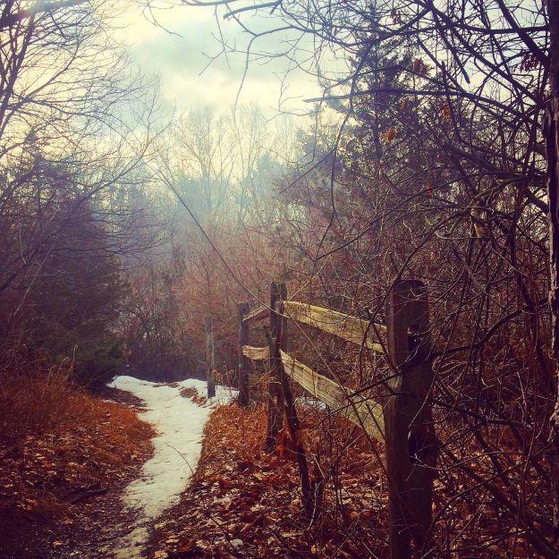 03.2015 path